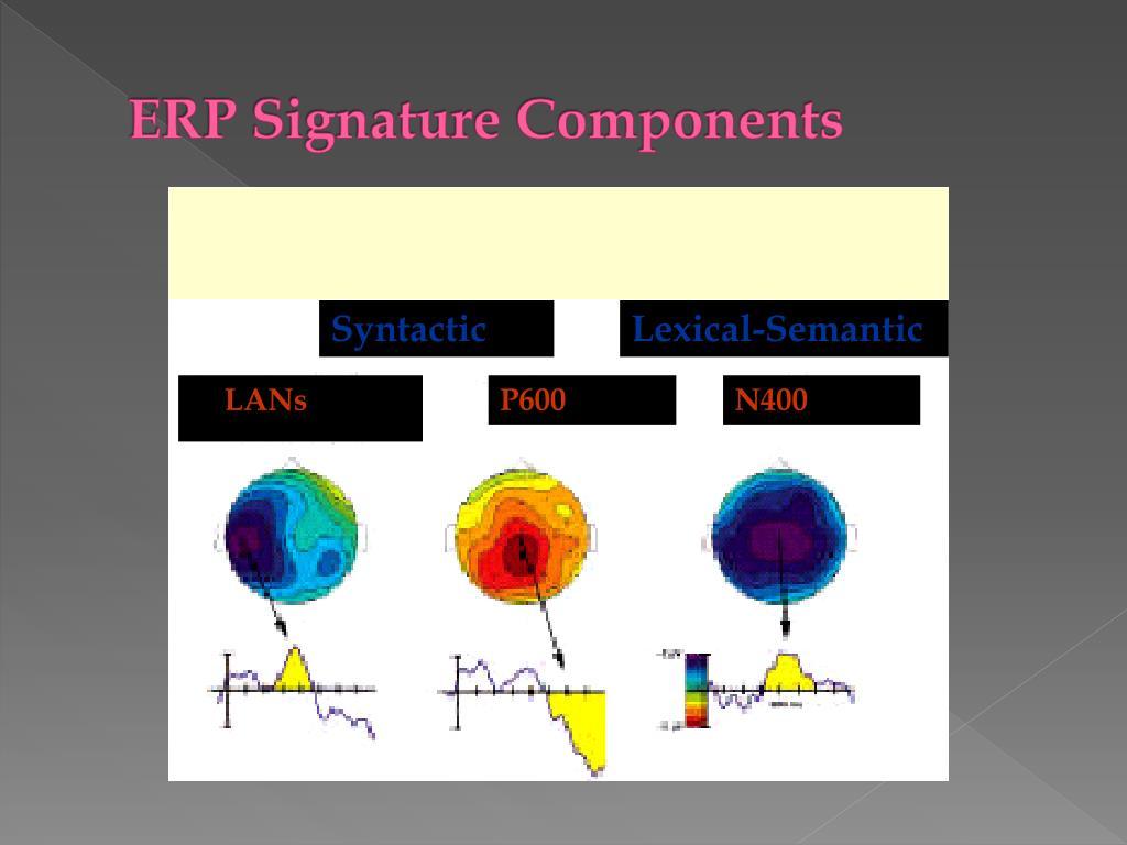 ERP Signature Components