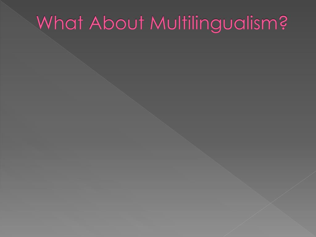 What About Multilingualism?