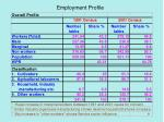 employment profile