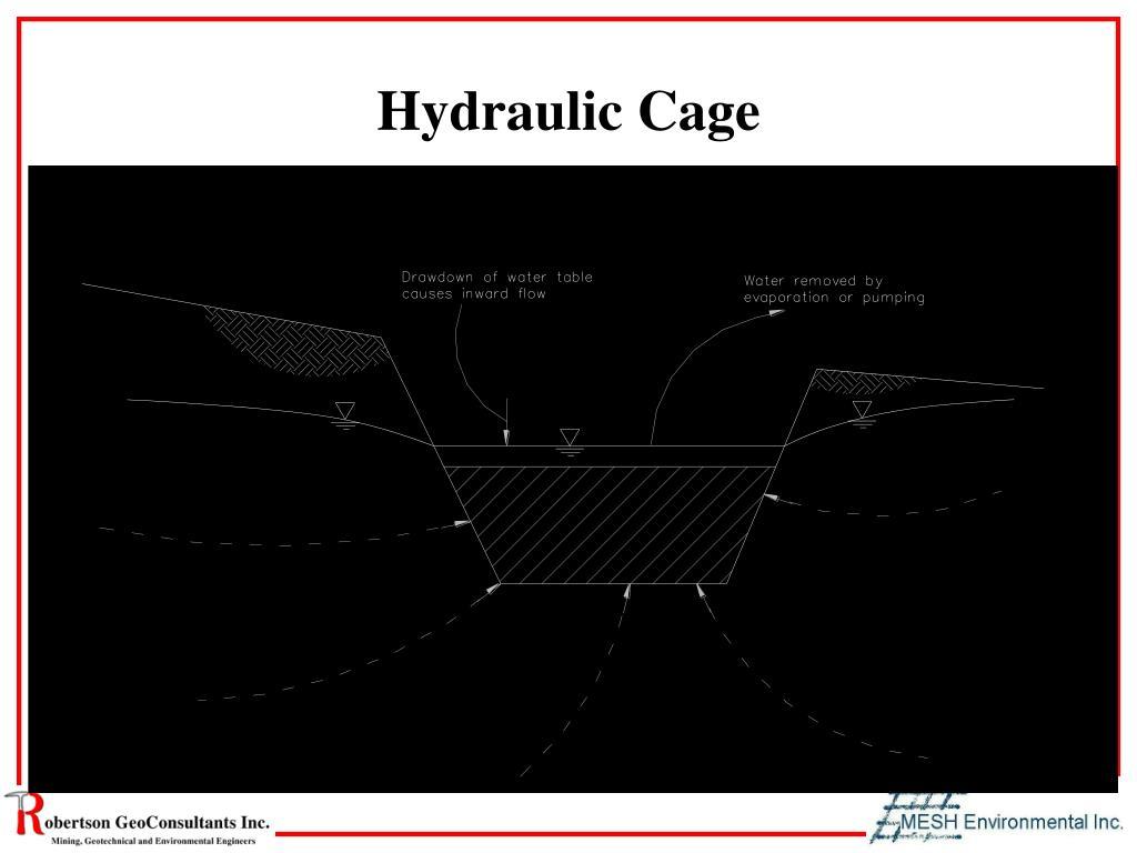 Hydraulic Cage