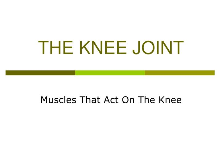 The knee joint l.jpg