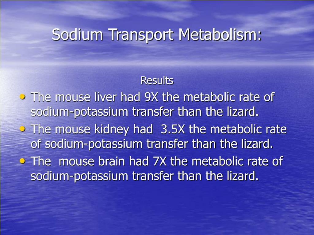 Sodium Transport Metabolism: