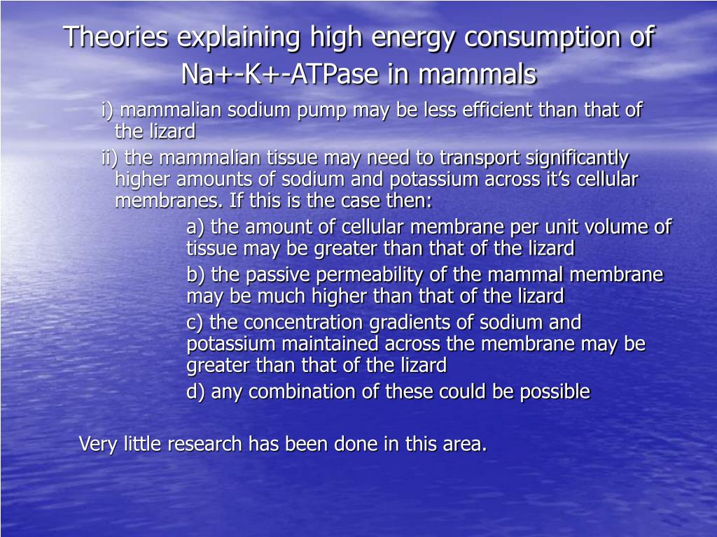 Theories explaining high energy consumption of  Na+-K+-ATPase in mammals
