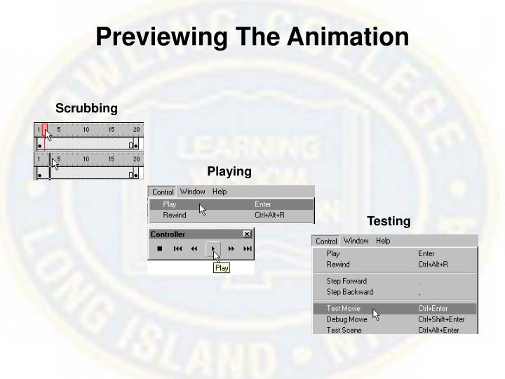 Previewing the animation