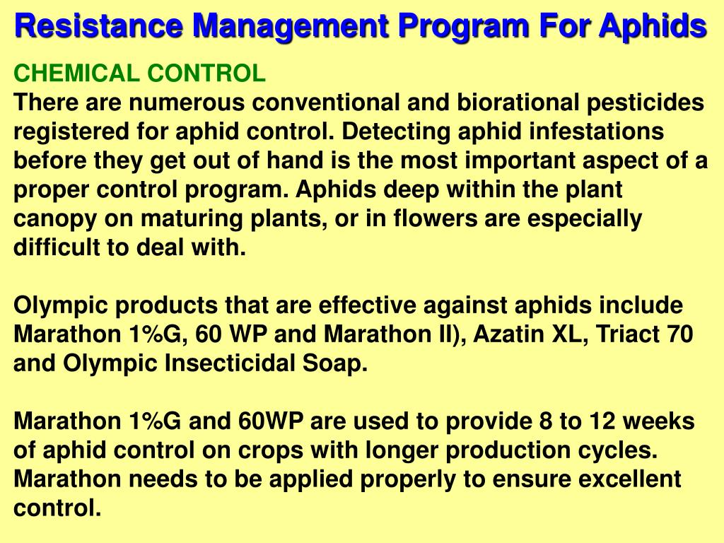 Resistance Management Program For Aphids