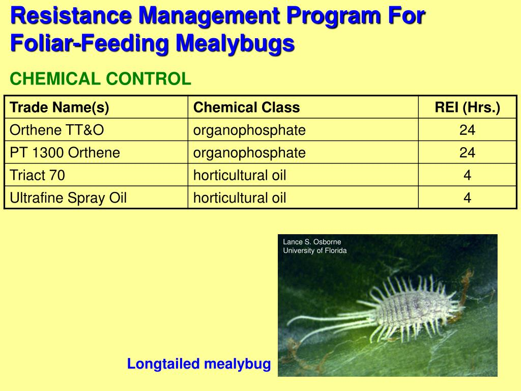 Resistance Management Program For