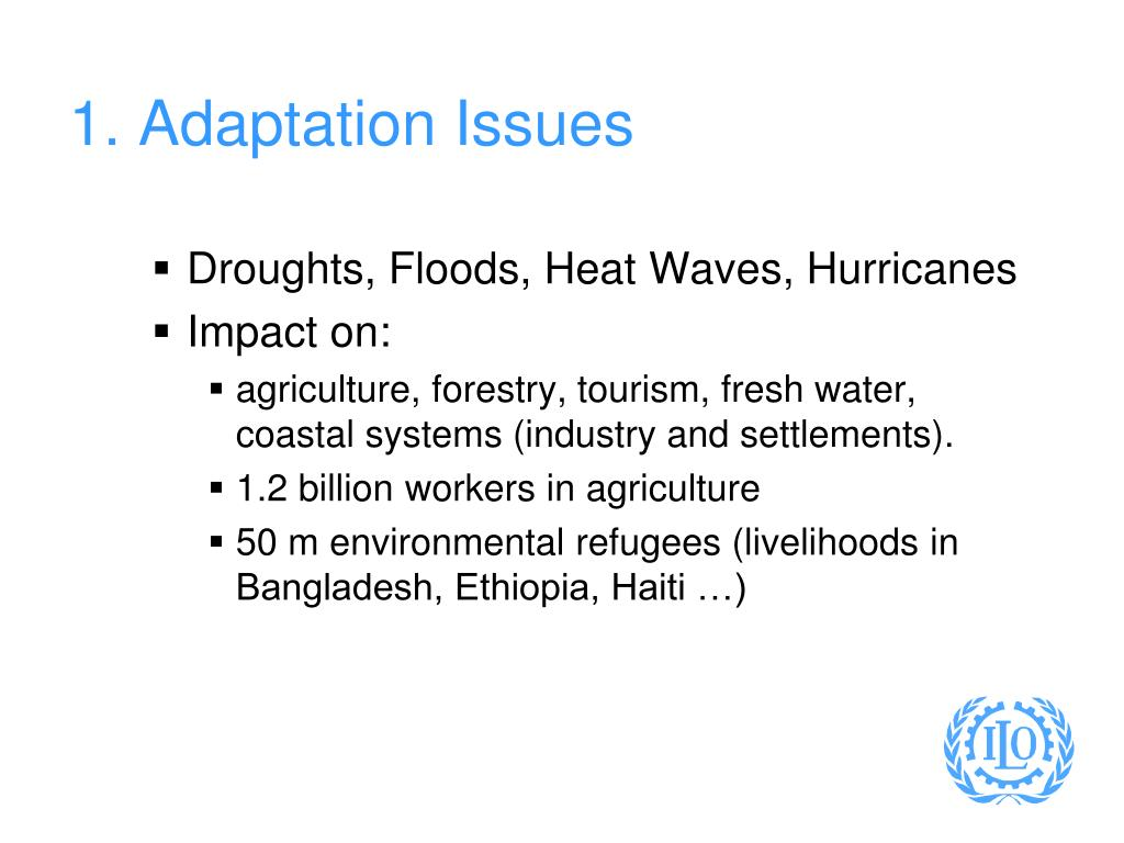 1. Adaptation Issues