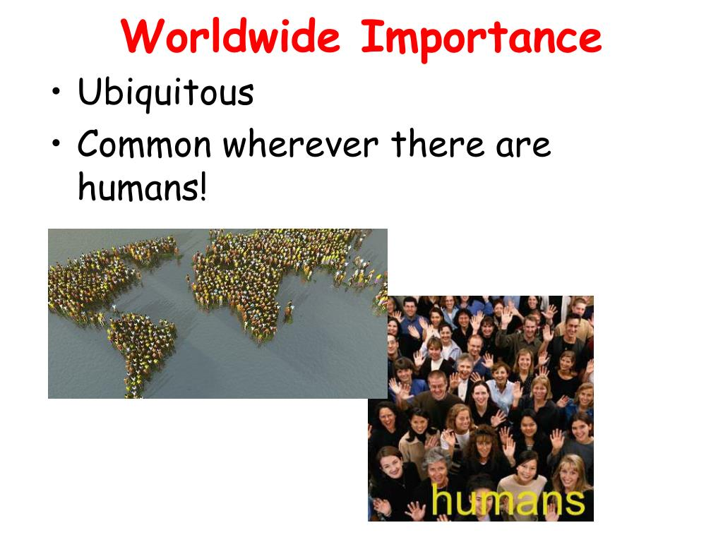 Worldwide Importance