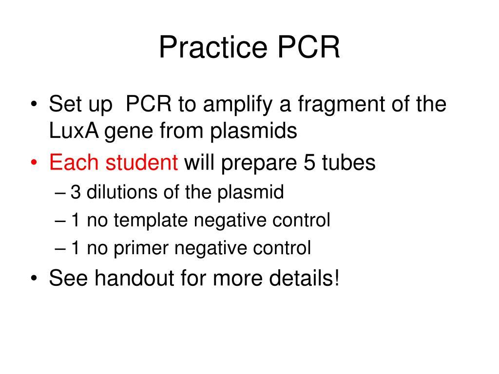 Practice PCR