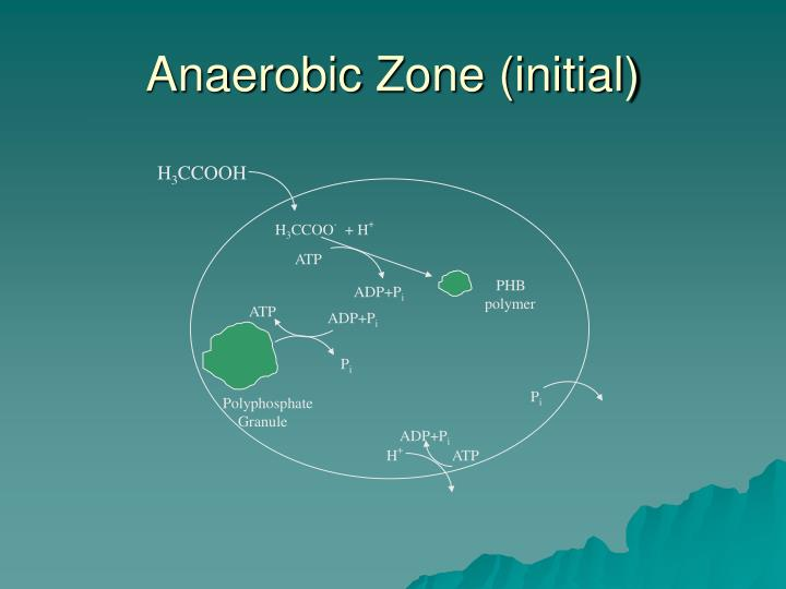 Anaerobic Zone (initial)