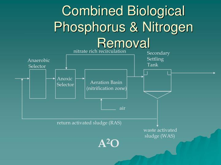 Combined Biological Phosphorus & Nitrogen Removal