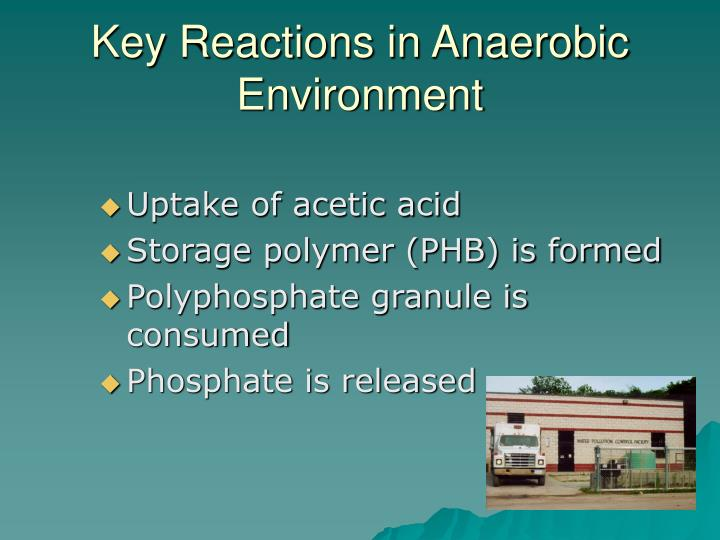 Key Reactions in Anaerobic Environment