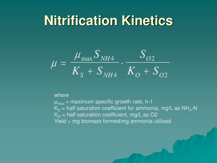 Nitrification kinetics