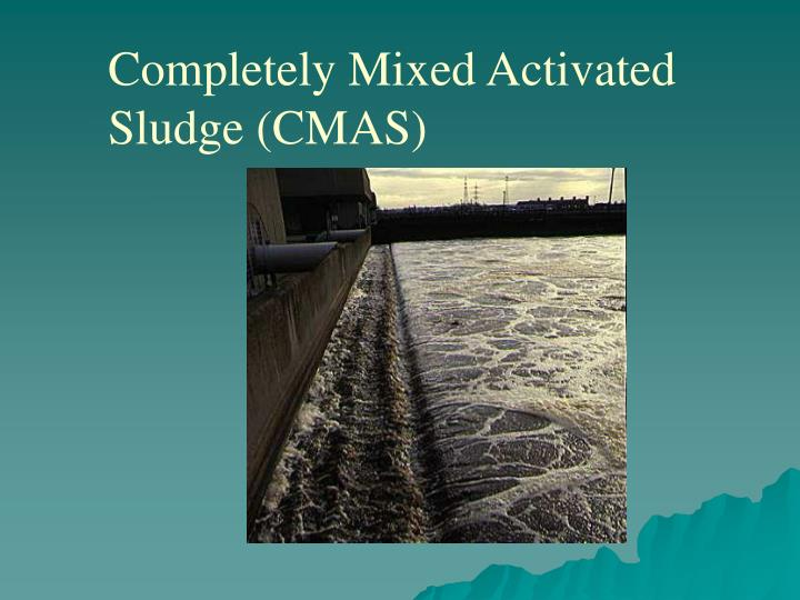 Completely Mixed Activated Sludge (CMAS)