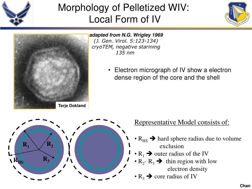 Morphology of Pelletized WIV: