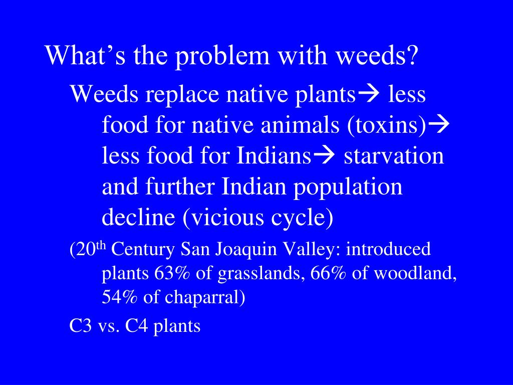 What's the problem with weeds?