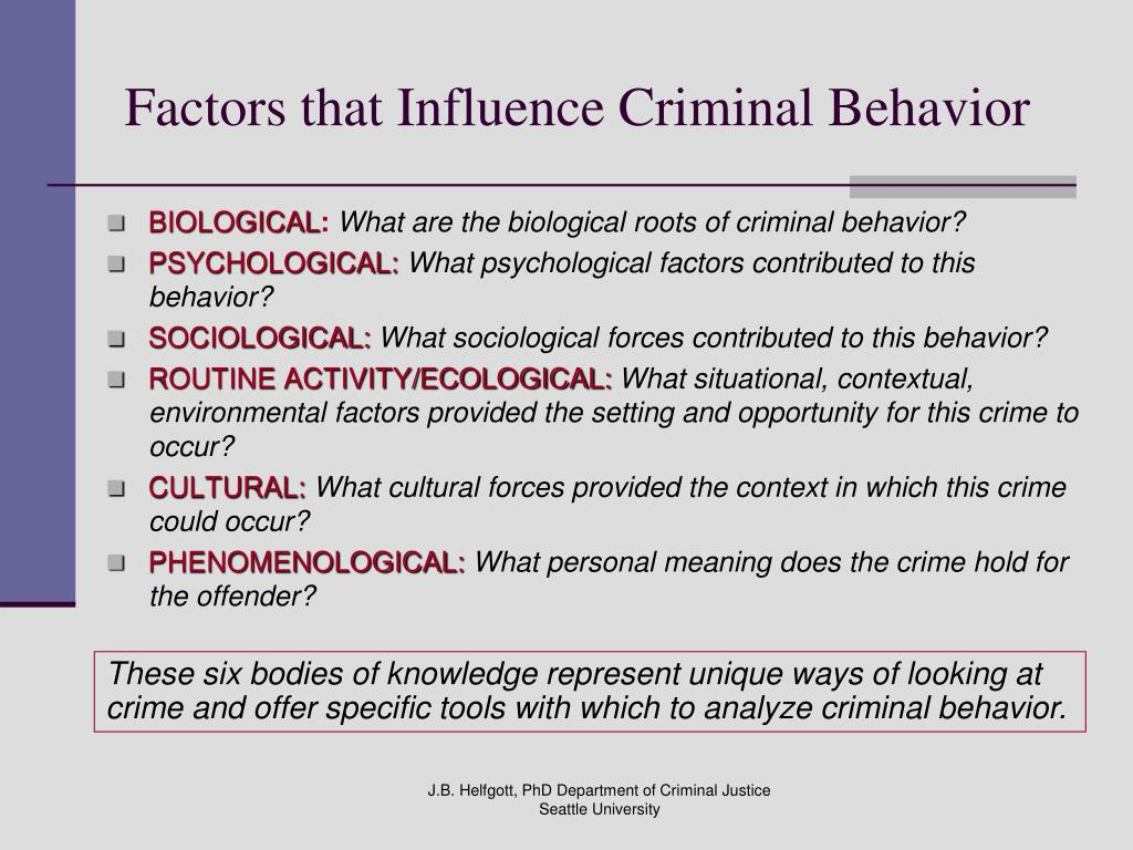 genetic factors and criminal behavior essay Researchers favouring the biological explanation look at genetic factors,  to typical behavior - in this essay,  criminal justice, sexual behavior, .
