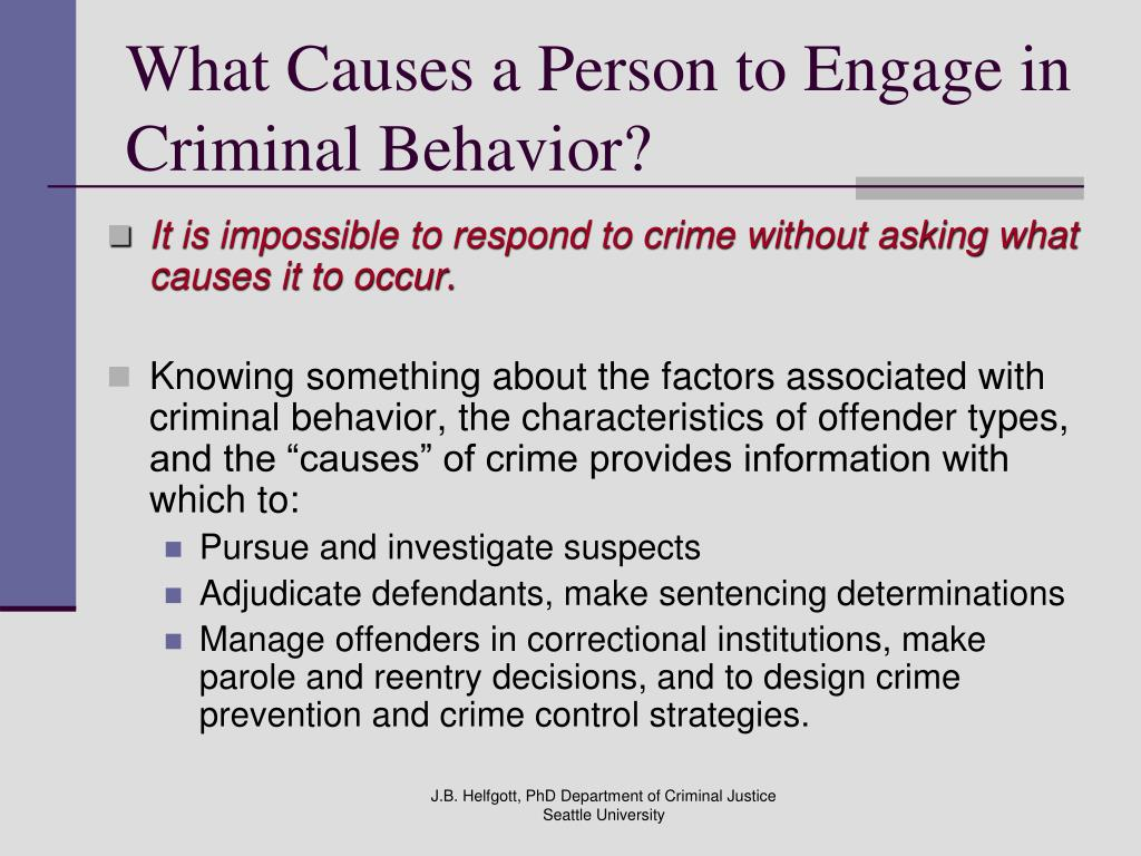 What Causes a Person to Engage in Criminal Behavior?