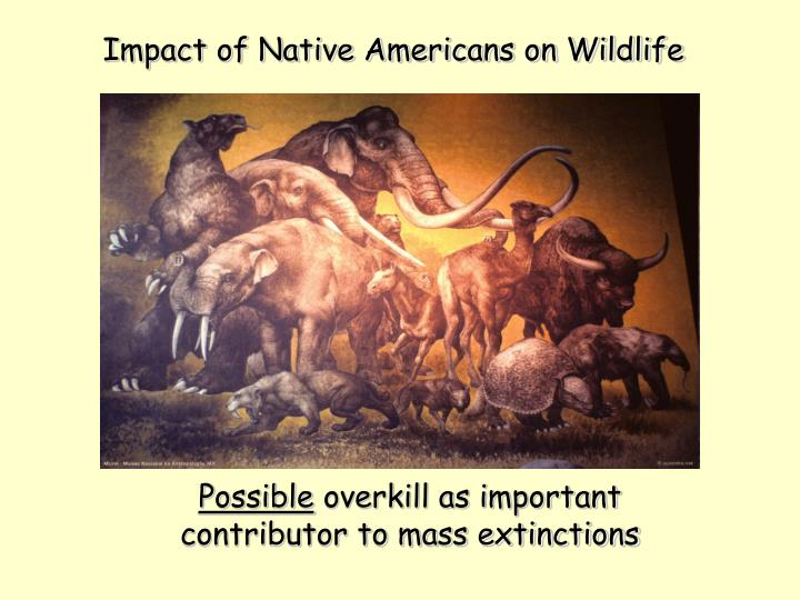 Impact of Native Americans on Wildlife
