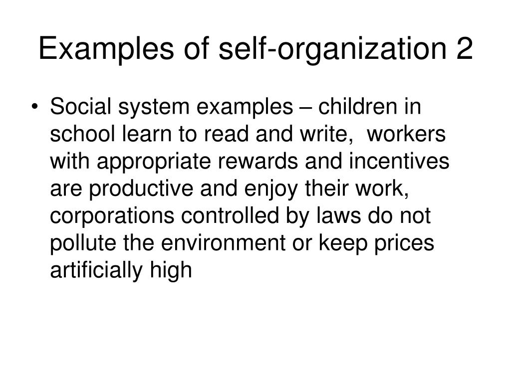 Examples of self-organization 2