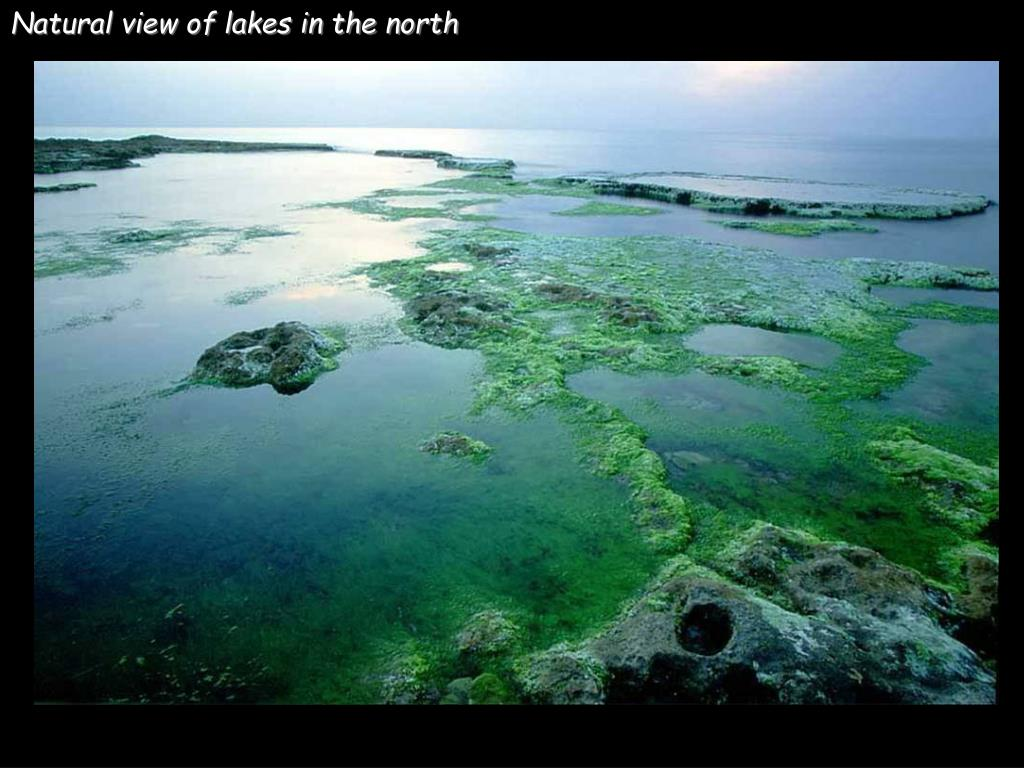 Natural view of lakes in the north