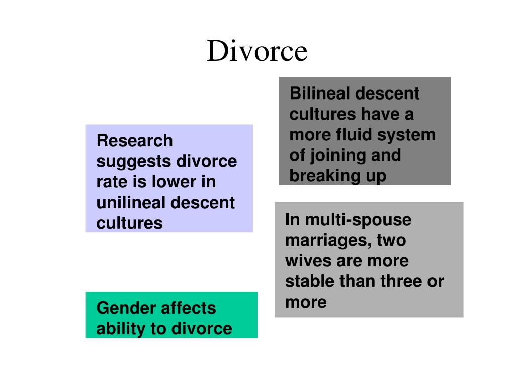 In multi-spouse marriages, two wives are more stable than three or more