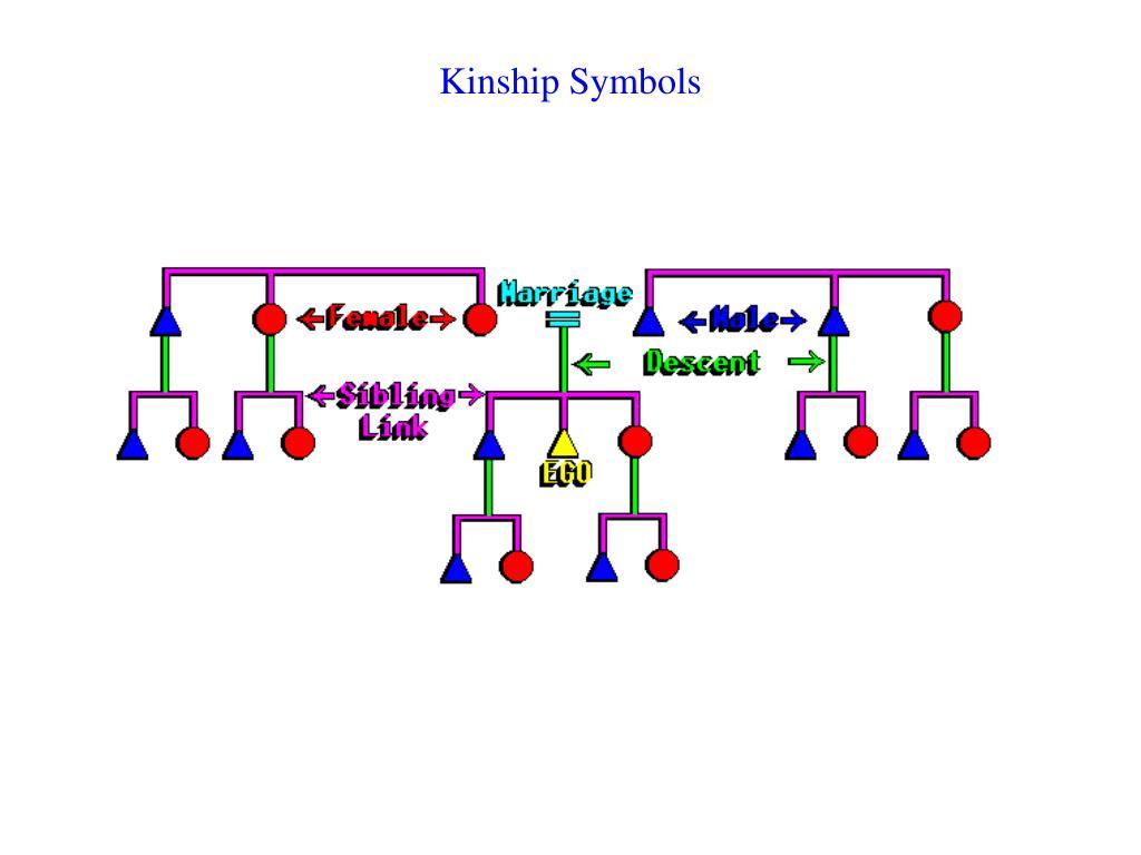 Kinship Symbols