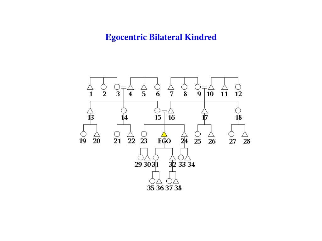 Egocentric Bilateral Kindred