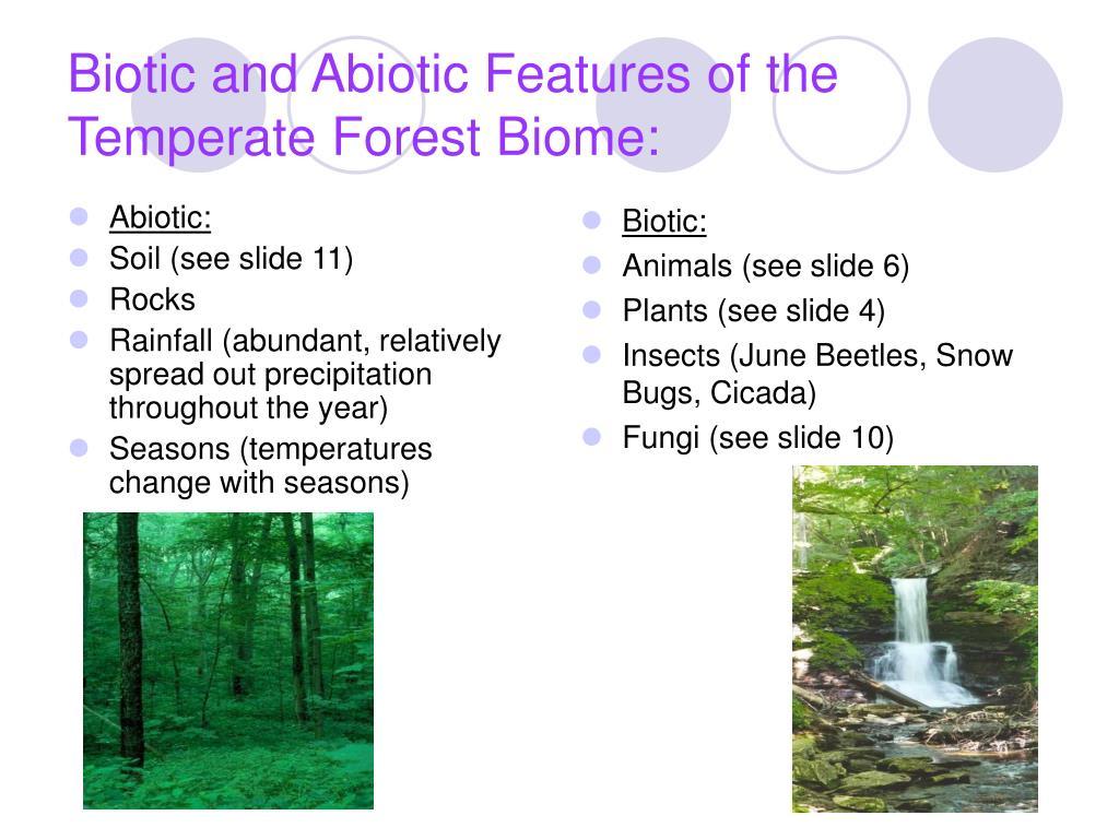 Abiotic: