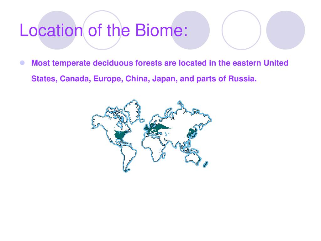 Location of the Biome: