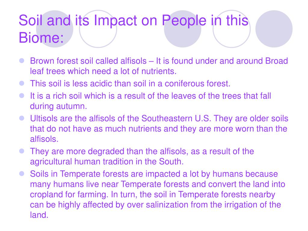 Soil and its Impact on People in this Biome: