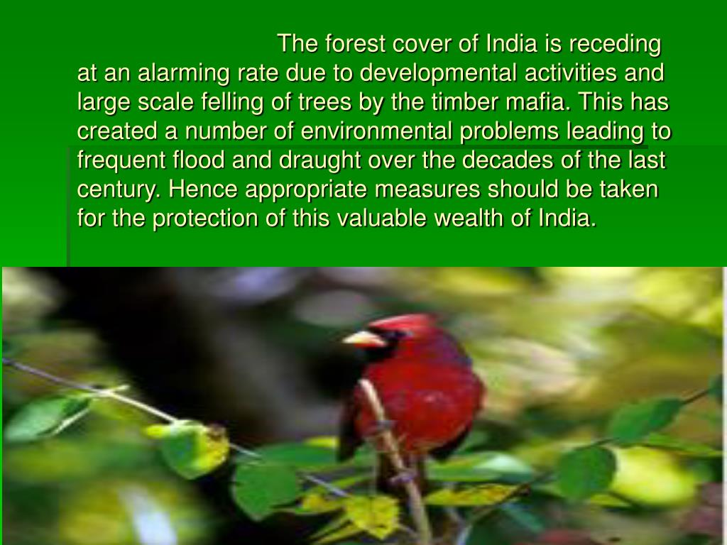 The forest cover of India is receding at an alarming rate due to developmental activities and large scale felling of trees by the timber mafia. This has created a number of environmental problems leading to frequent flood and draught over the decades of the last century. Hence appropriate measures should be taken for the protection of this valuable wealth of India.