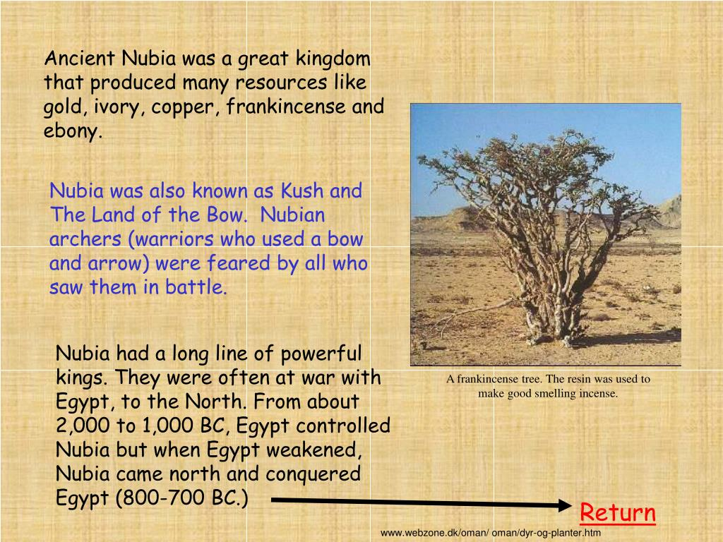 Ancient Nubia was a great kingdom that produced many resources like gold, ivory, copper, frankincense and ebony.