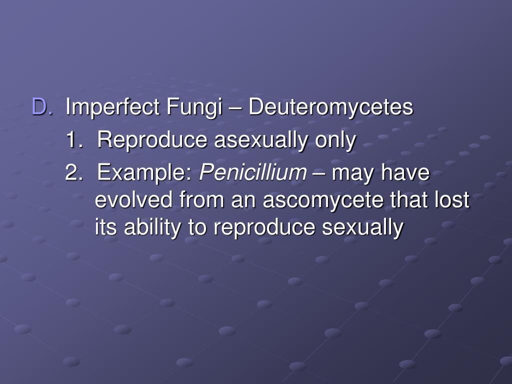 Imperfect Fungi – Deuteromycetes