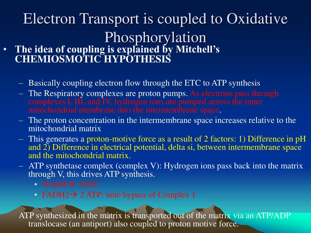 Electron Transport is coupled to Oxidative Phosphorylation