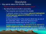 glycolysis15