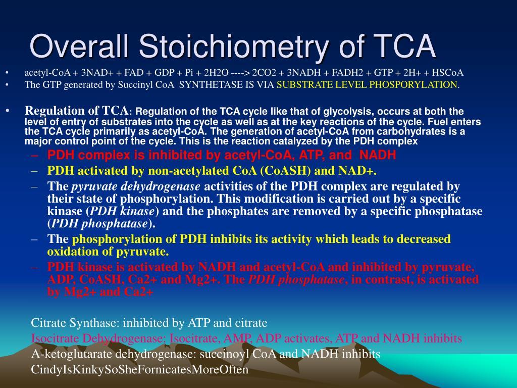 Overall Stoichiometry of TCA