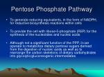pentose phosphate pathway52