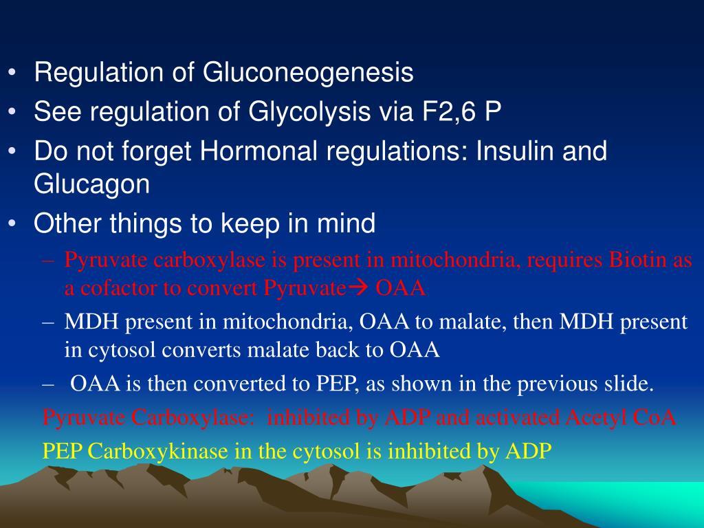 Regulation of Gluconeogenesis
