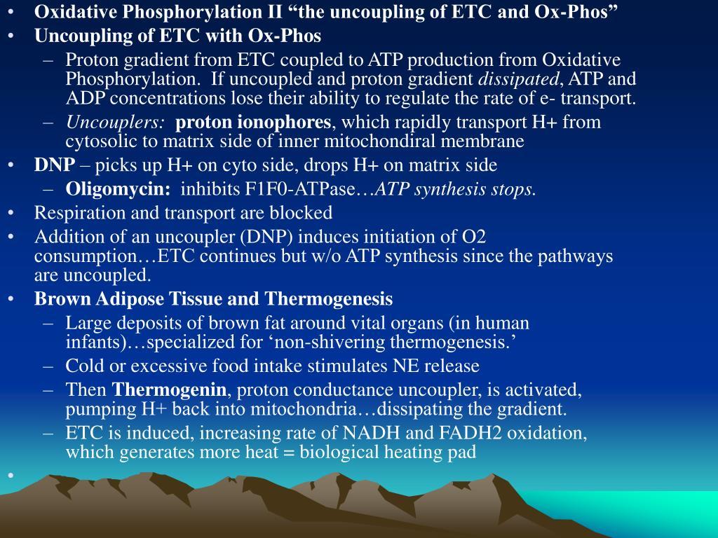 "Oxidative Phosphorylation II ""the uncoupling of ETC and Ox-Phos"""
