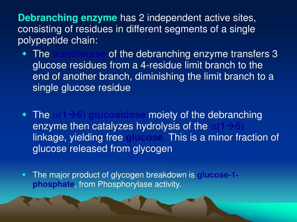 Debranching enzyme
