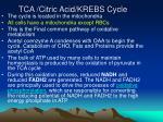 tca citric acid krebs cycle