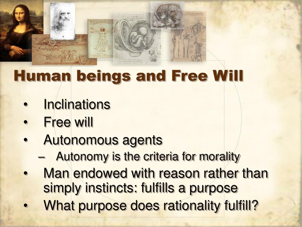 Human beings and Free Will