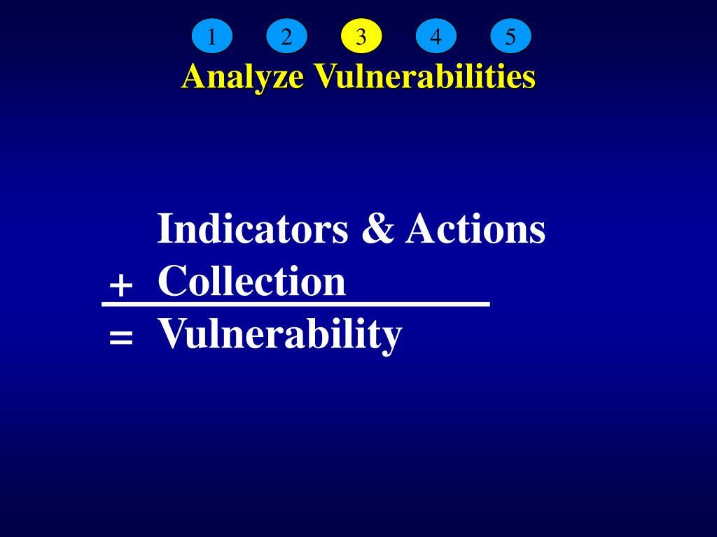 Analyze Vulnerabilities