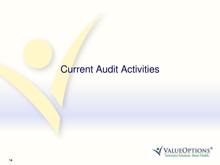 Current Audit Activities