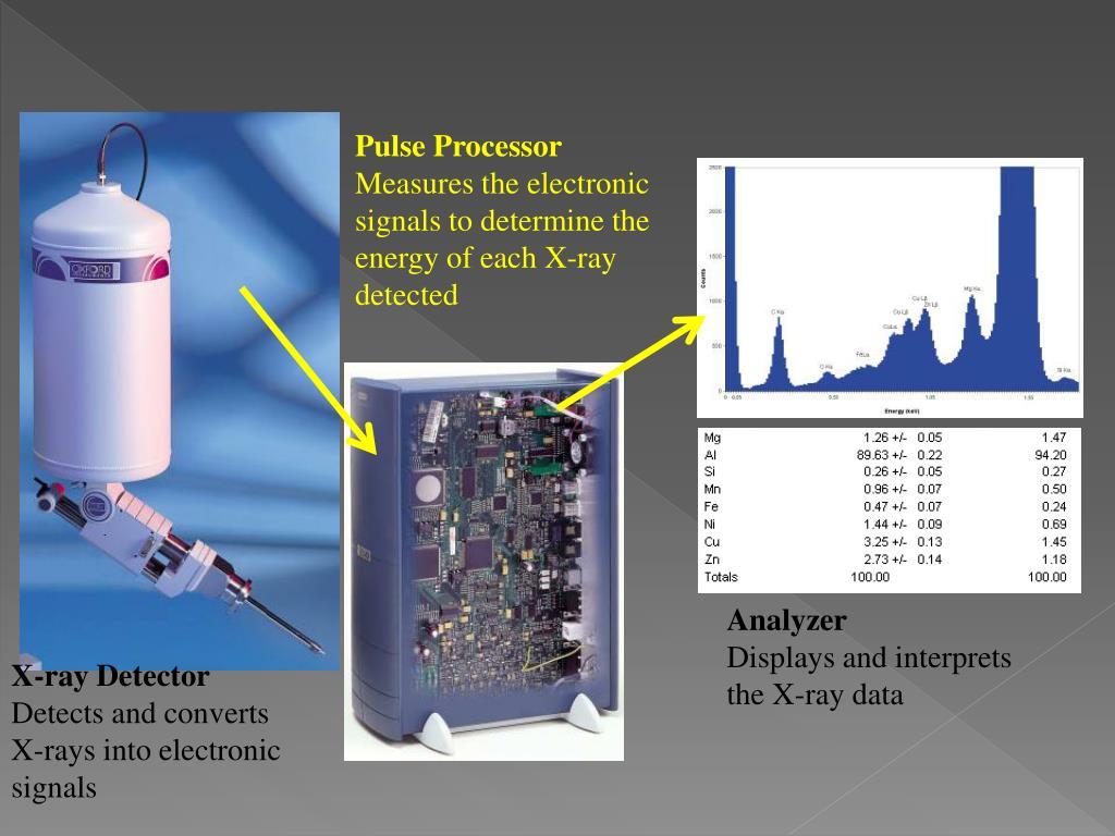 Pulse Processor