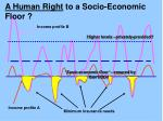 a human right to a socio economic floor