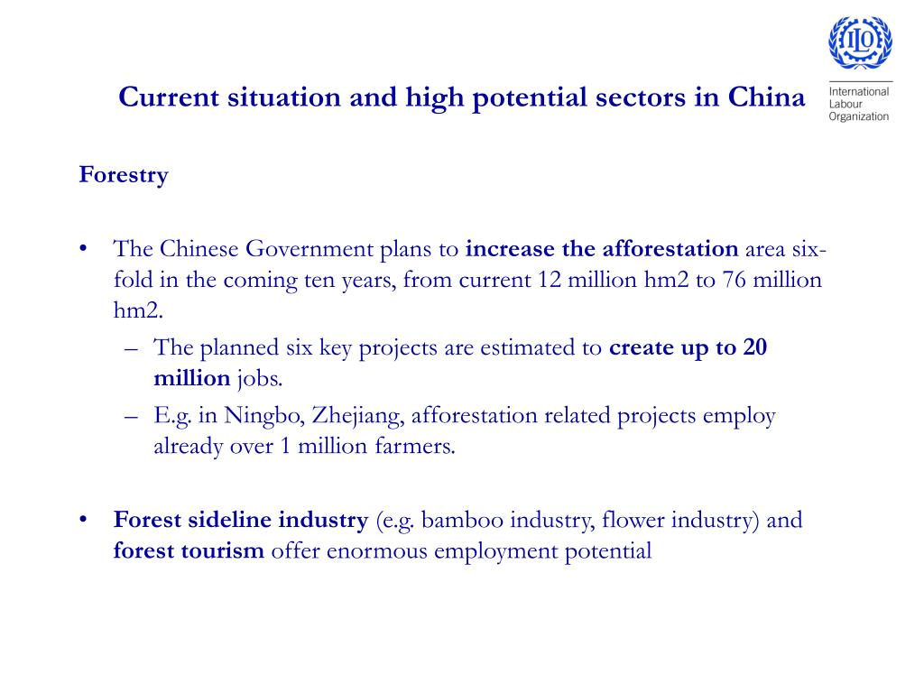 Current situation and high potential sectors in China