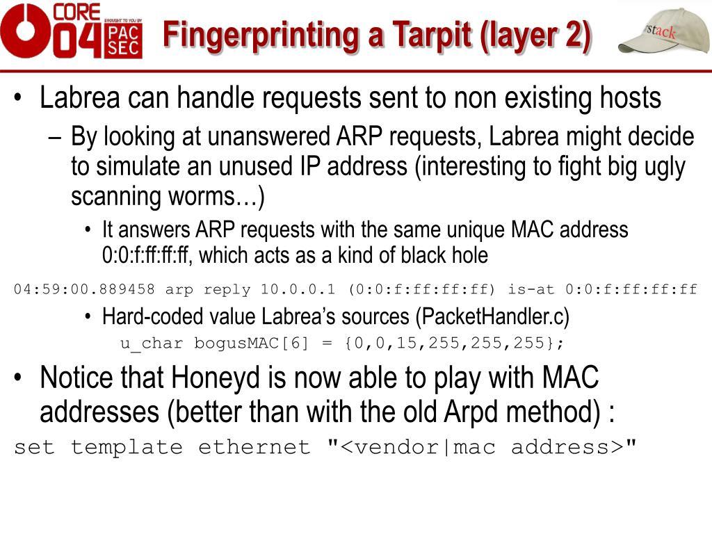 Fingerprinting a Tarpit (layer 2)