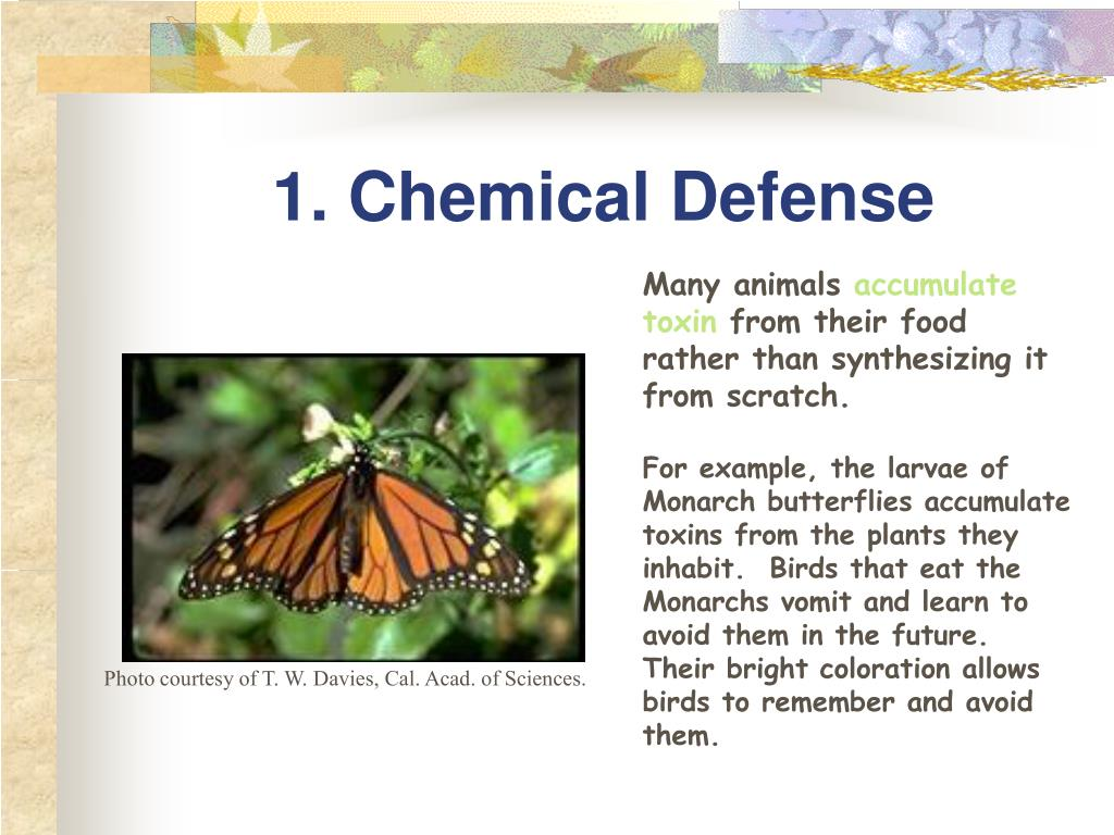 1. Chemical Defense
